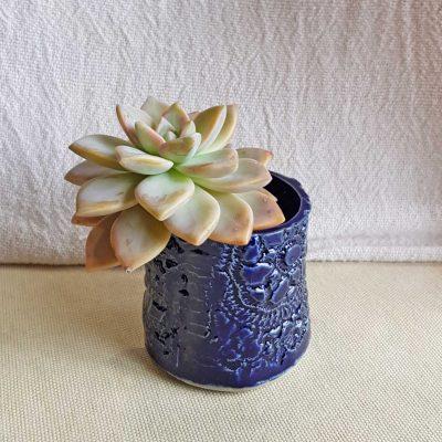 Succulent Planter/Vase